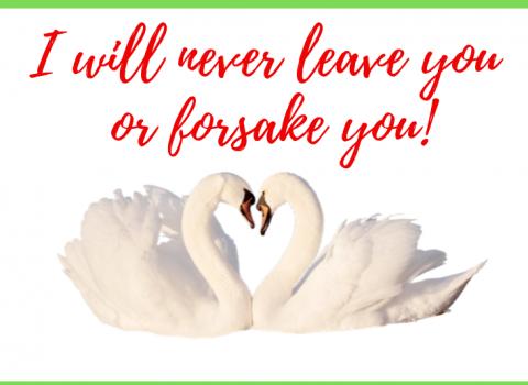 Never leave or forsake you